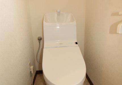 トイレがキレイだと嬉しい🚽